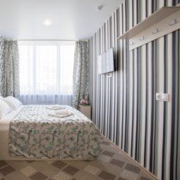 Двухместный номер Дэлюкс с 1 кроватью